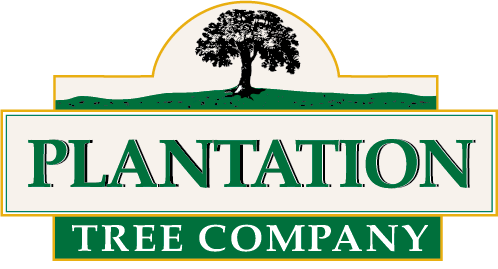 Plantation Tree Company
